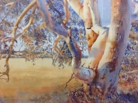 candidate-by-neville-peterkin-5-highly-commended-dardanup-artist